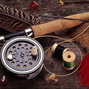 Охотничьи и рыболовные магазины Белово